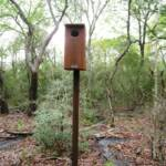 Several duck nesting boxes are located in the wooded area of the park.